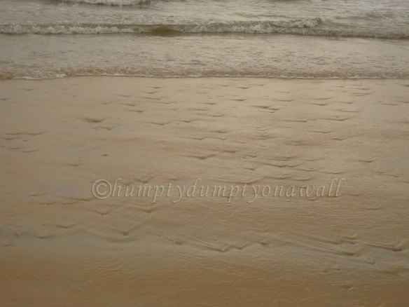 Lovely pattern created by the retreating waves over the shells embedded in the sand.